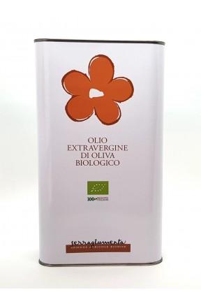 Olio extravergine da olive Mariantonietta biologico 3lt di Serragiumenta